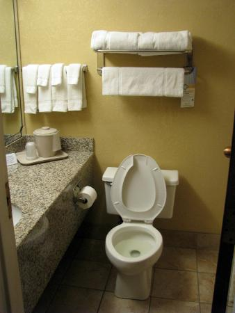 Quality Hotel and Conference Center: Clean bathroom