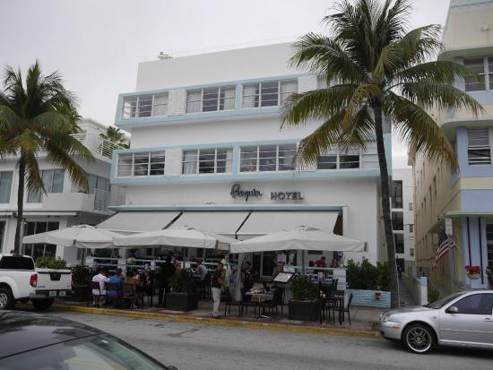 Penguin Hotel South Beach Picture Of