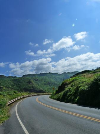 Boss Frog's Dive and Surf - Lahaina: must do bike ride