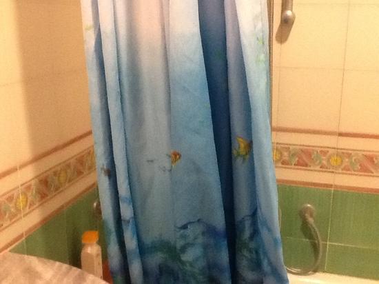 Hotel Albatros: tenda doccia