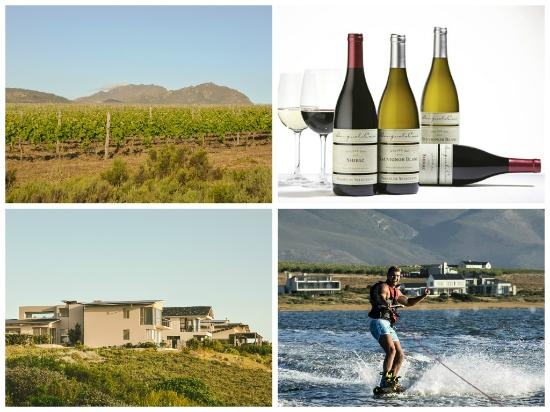 Benguela Cove Lagoon Wine Estate: Wine