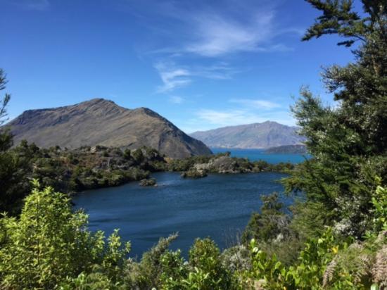 Eco Wanaka Adventures : A lake on the island