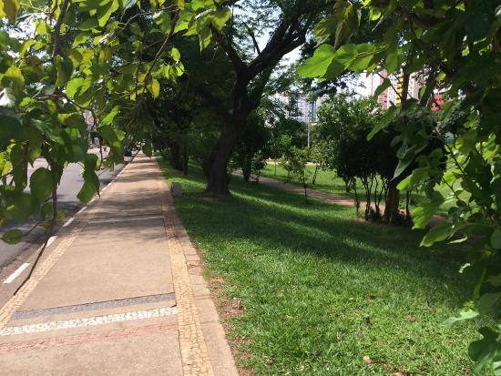 Povo Park: Área verde