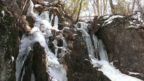 Kawamata Higashi Canyon Shizen Kansatsuen: つらら(12月下旬)