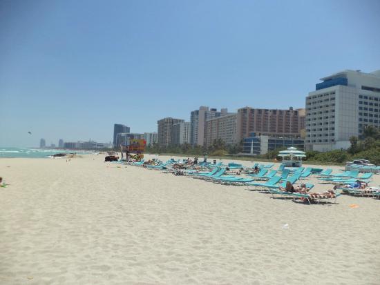 Hotel Riu Plaza Miami Beach Playa