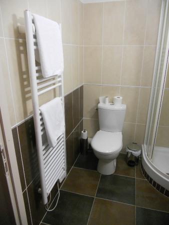 Agudes Hotel: Toilettes dans la salle de bain
