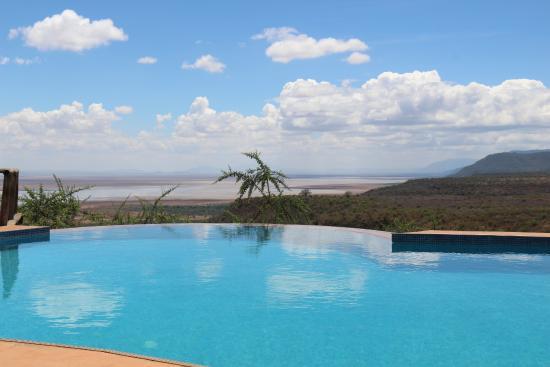 Escarpment Luxury Lodge : Die Aussicht vom Pool aus!