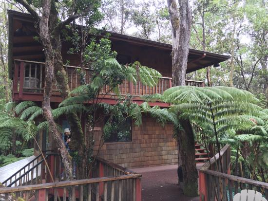 The Guest Cottages at Volcano Acres Tree House : Property
