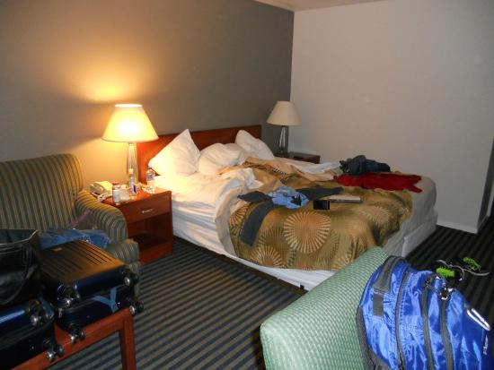 Buena Vista Motor Inn: Our very messy King Bed