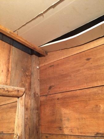 El Gallo de la Pena: Techo y paredes de baño.