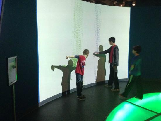 As crian as ir o amar picture of sony wonder technology for New tile technology