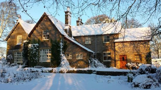 The Old Vicarage Country House Bed & Breakfast: The Old Vicarage looking festive Dec 2014