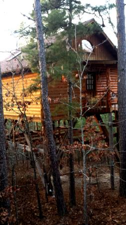 Approach to lofty lookout picture of treehouse cottages for Tree house cabins arkansas