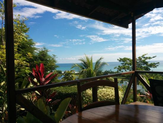 LagunaVista Villas Lodge: View from the dining room