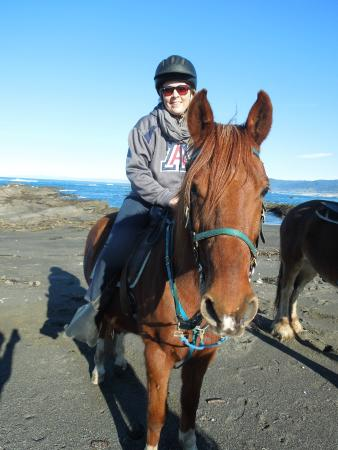 Ricochet Ridge Ranch: Voltaire was a great horse!