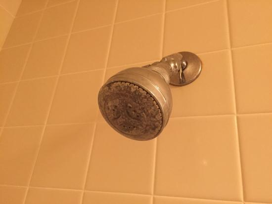 Cabrillo Inn at the Beach: Old dirty shower fixture