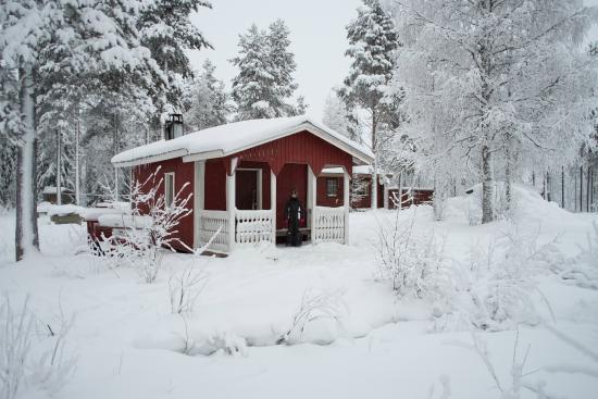 Finn-Jann Husky Farm