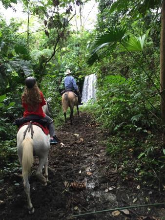 Cabalgata Don Tobias: Waterfall during Don Tobias horseback tour
