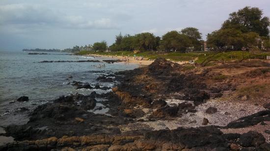 Kamaole Beach Park 3 : Great Beach
