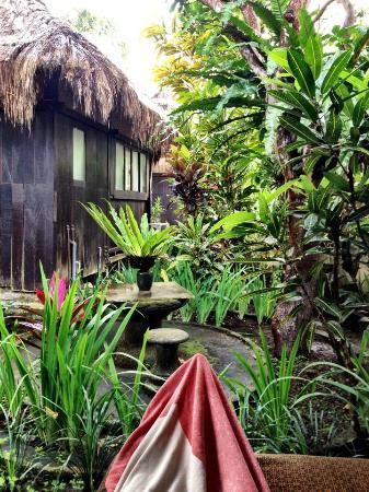 Ubud Sari Health Resort: View from the deck