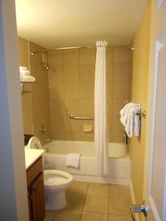 Wyndham Skyline Tower: Bathroom