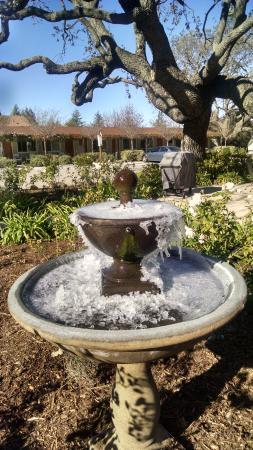 Meadowlark Inn: Frozen fountain! It was cold!