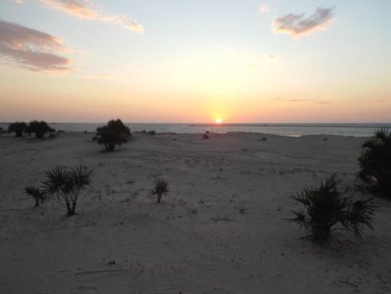 Morondava Beach Bungalows : View from deck on restaurant
