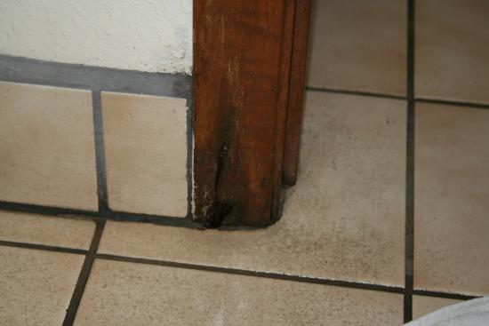 Landmark Inn : Black mold and water damage