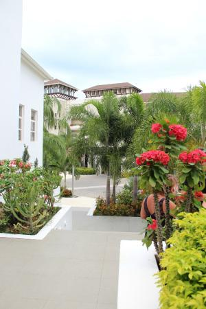 Outside The Wedding Reception Venue Picture Of Secrets Wild Orchid