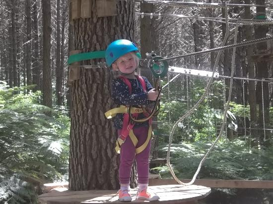Adventure Forest : about to zipline