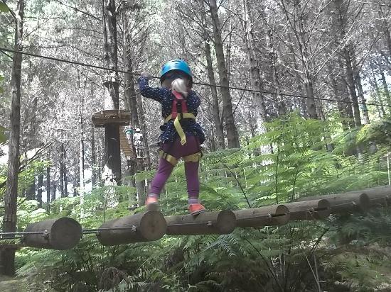 Whangarei, Yeni Zelanda: walking on logs