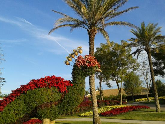 Esculturas florales picture of jardines de mexico for Jardines mexico