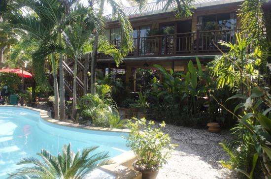Guesthouse Liam's Suan Dok Mai : pool with dining area behind