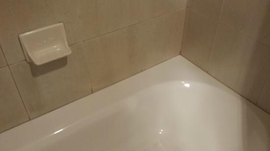 Paramount Hotel: Bath tub tile surround moldy