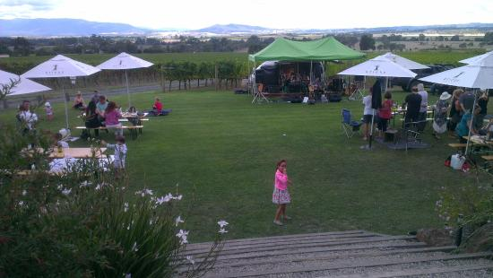 Sticks Winery: Stage & grassy area