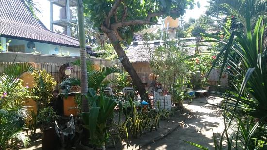 Rumah Kundun: Lovely garden