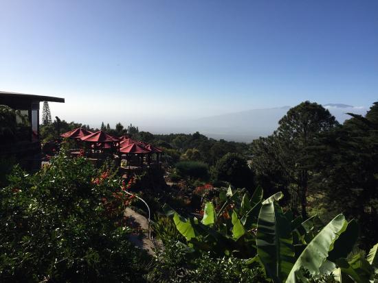 Kula Lodge: クラロッジ1号室からの眺め 最高!