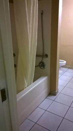 Microtel Inn & Suites by Wyndham Raleigh: bathroom