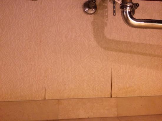 Tapisserie d coll e dans la salle de bains foto di new - Tapisserie salle de bain ...