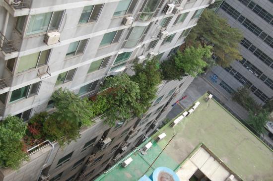 Gangnam Artnouveau City II: Вид на соседнее здание