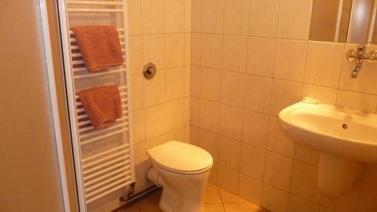 Kocourovec, République tchèque : Koupelna na hotelovém pokoji
