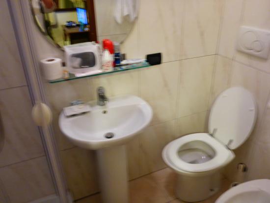 Hotel Antico Acquedotto: SMALL BATHROOM
