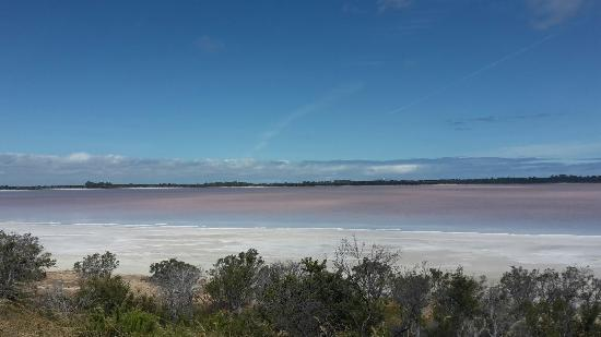 Esperance Visitor Centre: Lake Warden,  the Pink Lake they don't want you to know about