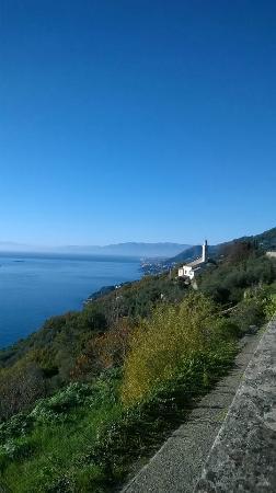 Trattoria Al Serraglio: vista panoramica