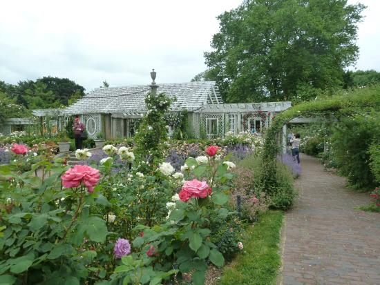 Cranford rose garden at the brooklyn botanical gardens - Brooklyn botanical garden admission ...