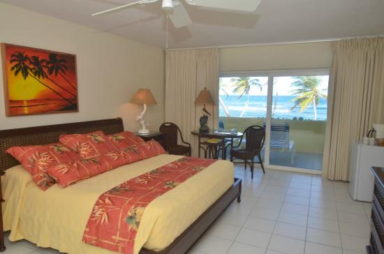 The Palms at Pelican Cove: Standard Beachfront 1 King Guest Room