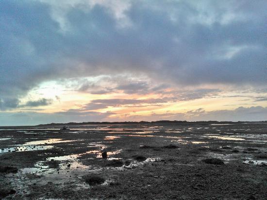 The Pennington: Sunset on the Estuary