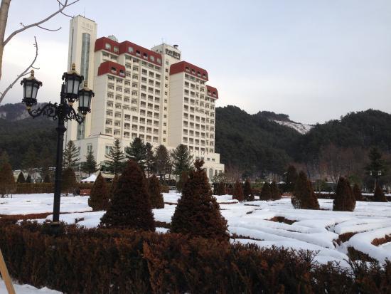 Kensington Flora Pyeongchang: View of hotel from the garden