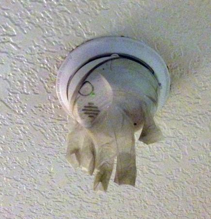 Motel 6 San Luis Obispo South: Rubber glove pulled over smoke detector-been there a long time. Cleaning staff never looked up.