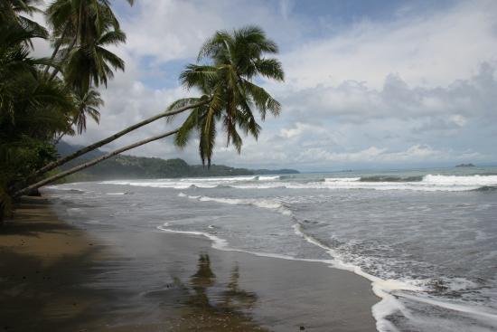 Hotel Lookout at Playa Tortuga: Playa Uvita